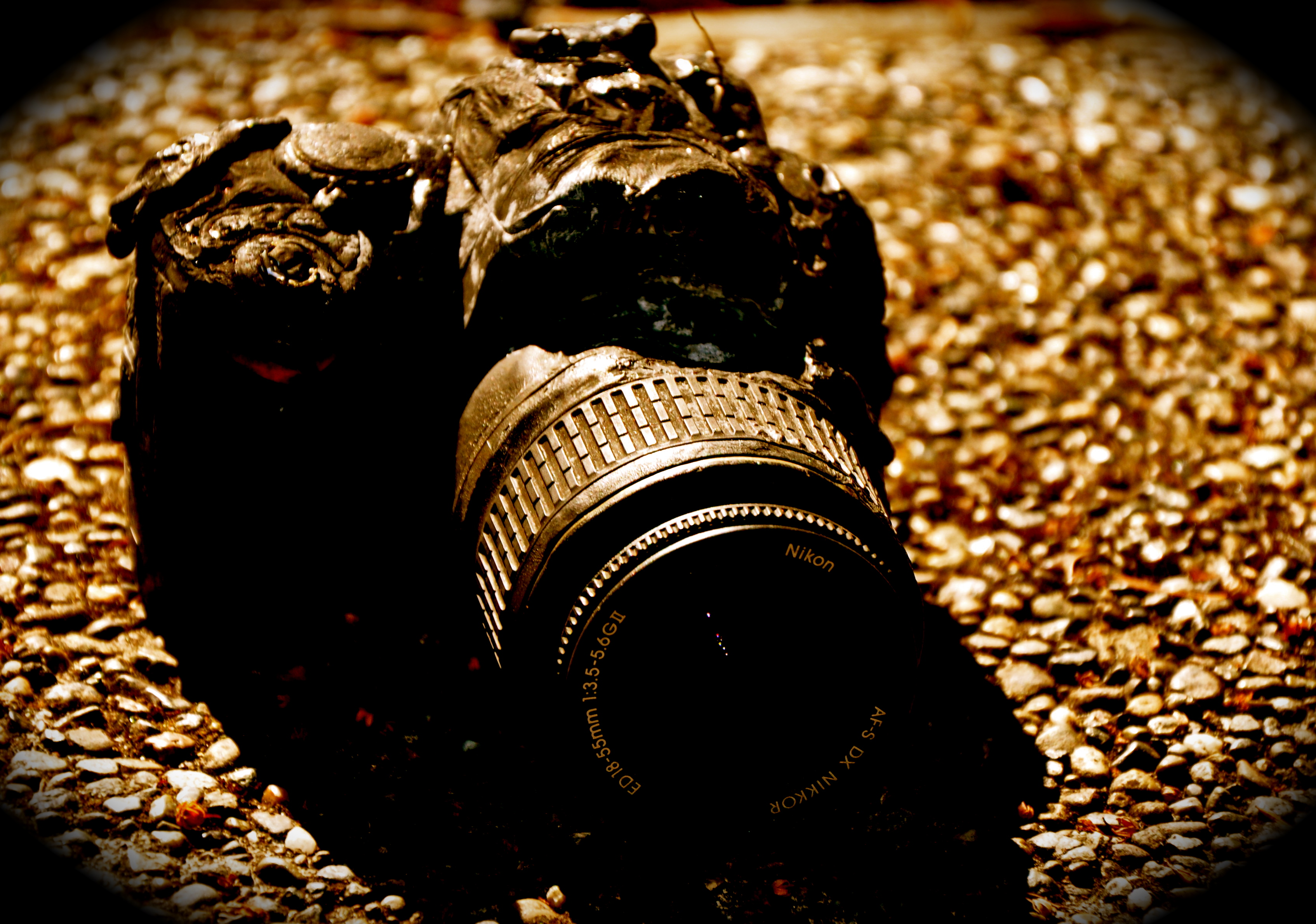 My Camera Post-Fire (the memory card with ~ 800 pics survived) at the Burn House. Photo by William Bass.