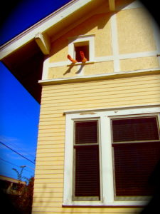 Kate's feet hanging out the window into the sunshine, Big Yellow Dragonfly House. Photo by Morgan Bass.