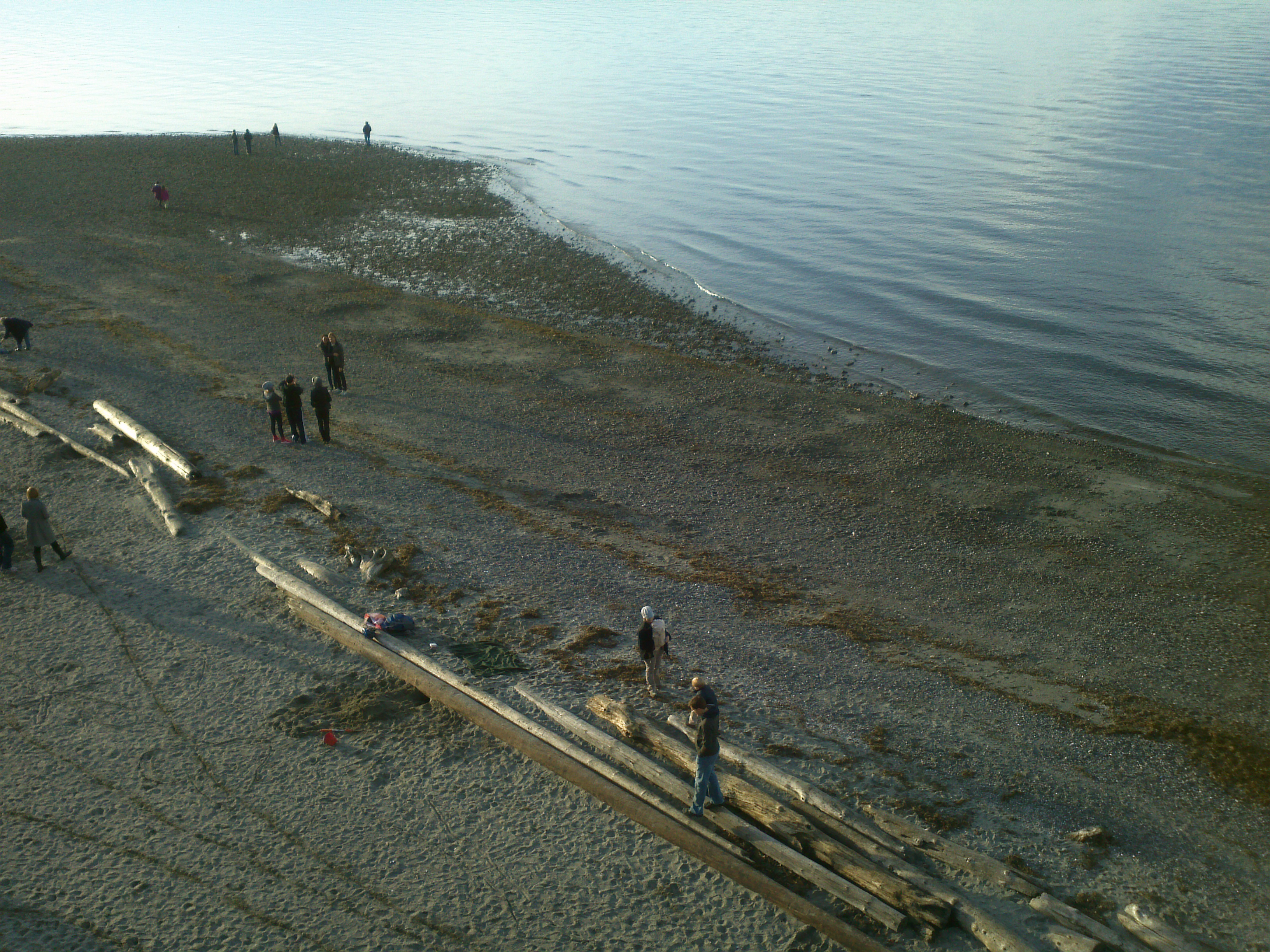 The beaches of Carkeek Park swept clean by Winter storms, New Year's Day 2012.