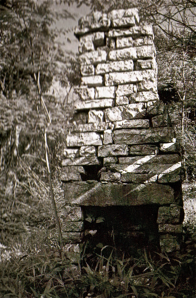 Ruins of the old Sarver Homestead along the Appalachian Trail in Virginia, May 1991.